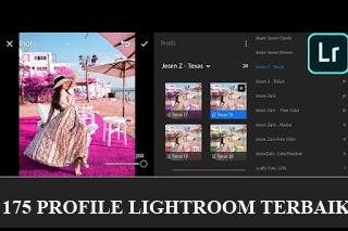 175 Profile Lightroom Terbaik Dan Terkeren