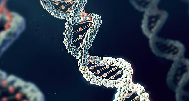 Jornada Goiana de Genética em Saúde