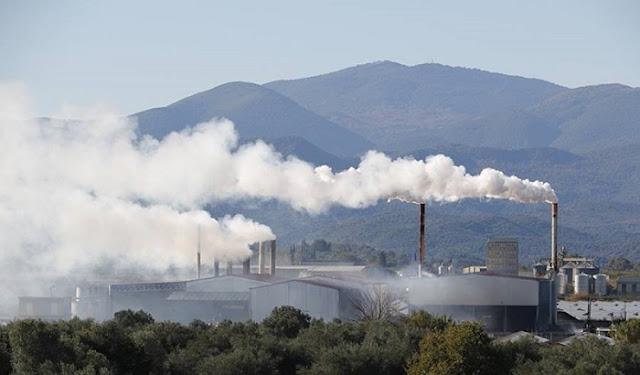 Βελτιωμένη η κατάσταση με τα πυρηνελαιουργεία λέει ο Νίκας