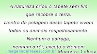 Frases do Escritor Monteiro Lobato