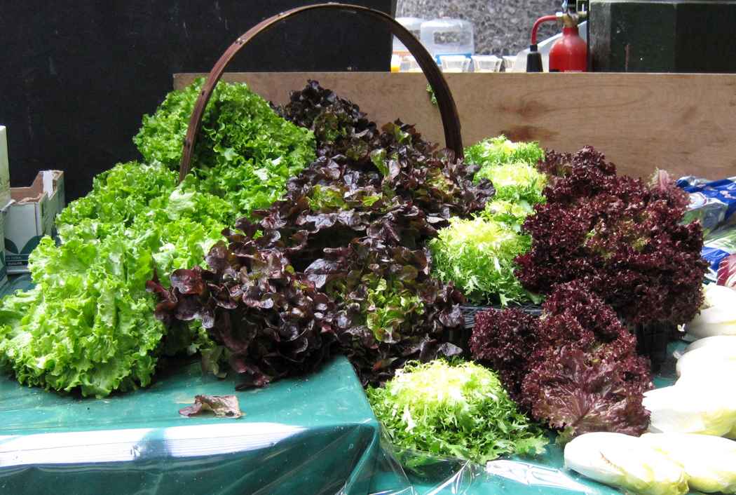 Borough Market Lettuces