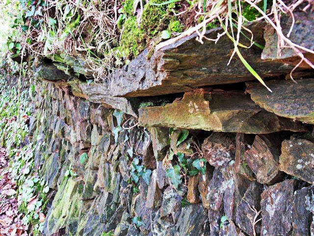 Old stone wall by Kings Wood, Pentewan, Cornwall