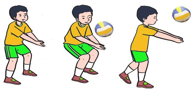 Gambar Teknik Bermain Voli: Menekuk kaki dan mengayun lengan dengan memantulkan bola dalam passing bawah. Berikut merupakan cara melakukan passing bawah dalam permainan bola voli : Teknik cara berdiri: Persiapan dengan berdiri dimana kedua kaki dibuka selebar bahu serta kedua lutut direndahkan hingga berat badan bertumpu pada kedua ujung kaki di bagian depan. Kedua lengan dirapatkan dan diluruskan di depan badan hingga kedua ibu jari sejajar, dan pandangan ke arah datangnya bola. Teknik dorongan bawah: Agar dapat melakukan dorongan, kedua lengan diarahkan ke arah datangnya bola, bersamaan kedua lutut dan pinggul naik serta tumit terangkat dari lantai. Teknik menerima bola: usahakan arah datangnya bola tepat ditengah-tengah badan, dan perkenaan bola tepat pada lengan bagian bawah di atas pergelangan tangan. Untuk melakukan gerakan akhir (passing bawah), dengan cara tumit terangkat serta pinggul dan lutut naik serta juga lengan lurus dan pandangan mengikuti arah gerakan bola.