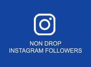 buy non drop instagram followers india