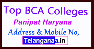 Top BCA Colleges in Panipat Haryana