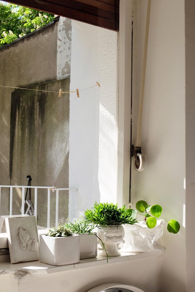 nachhaltig Wohnen, dekorieren mit Pflanzen, Einrichten mit wenig Geld, secondhand Wohnen, urban jungle bloggers, Zimmerpflanzen, sustainable Lifestyle, Green Bloggers, Wohnblog mit Nachhaltigkeit, Minza will Sommer