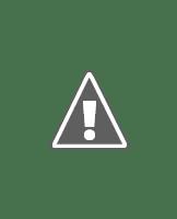Robert David Hall como el doctor Al Robbins en CSI Las Vegas