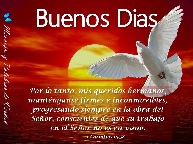 Frases Hermosas De Buenos Dias: Mensajes Y Palabras De Verdad: Buenos Dias, Hermosos Mensajes