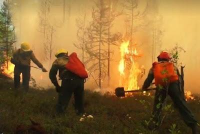 Пожары в Сибири пугают мир
