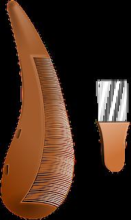 Penggunaan sisir bergantian dapat tertular kutu