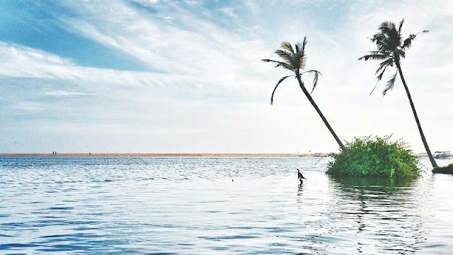 Poovar, Kerala Tourism