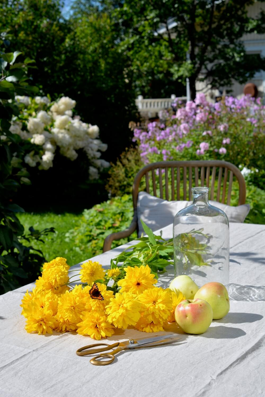 syyskuu-puutarhassa