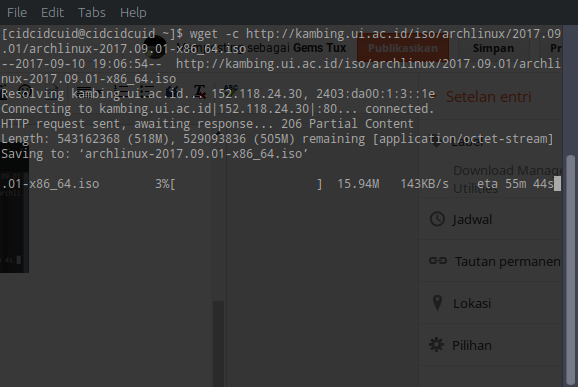 WGet - command-line download manager in archlinux