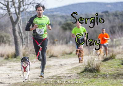 Sergio - Clay