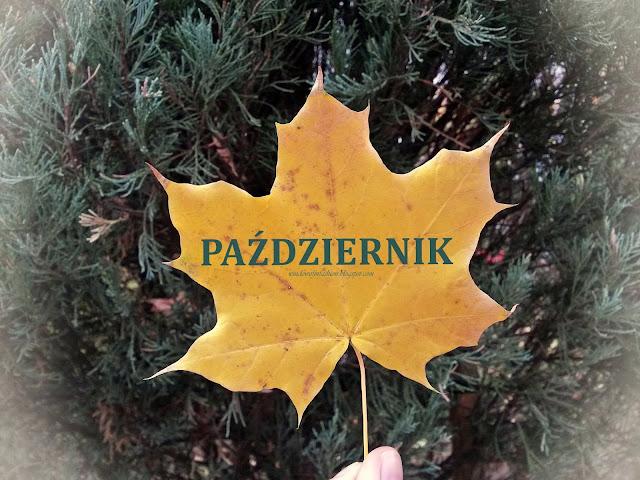 """Żółty jesienny liść i napis """"październik"""""""