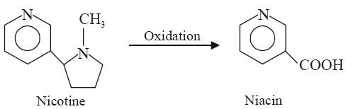 N-Oxide Derivative (Oxiniacic Acid)