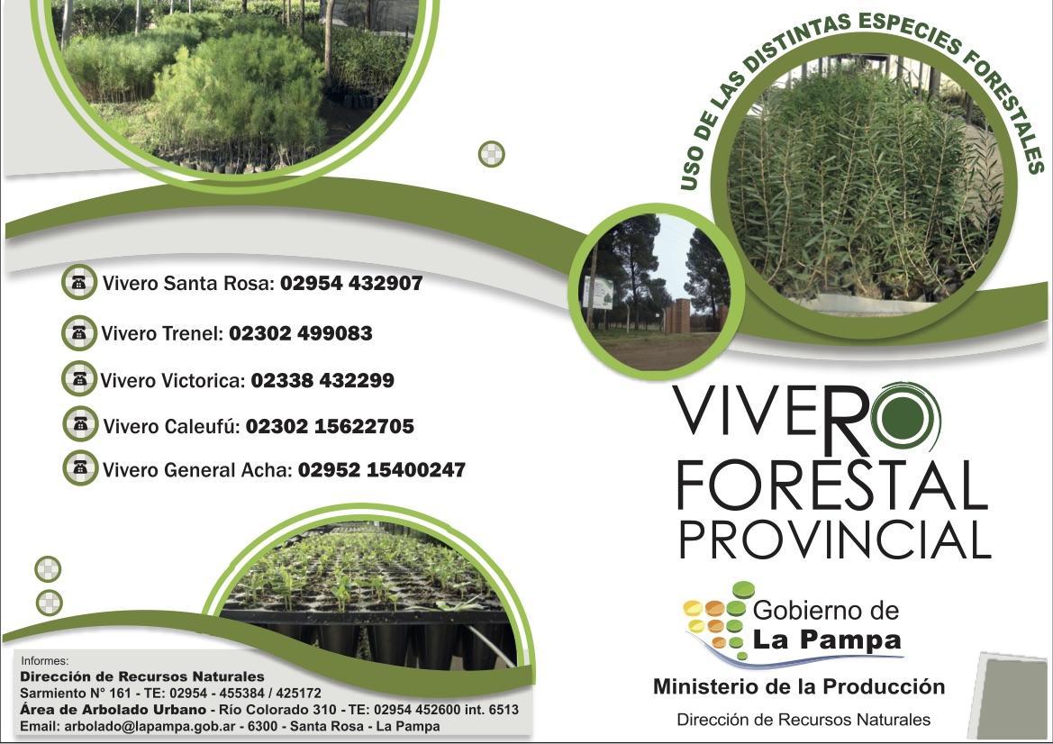 Venta de plantas en viveros forestales provinciales for Produccion de viveros