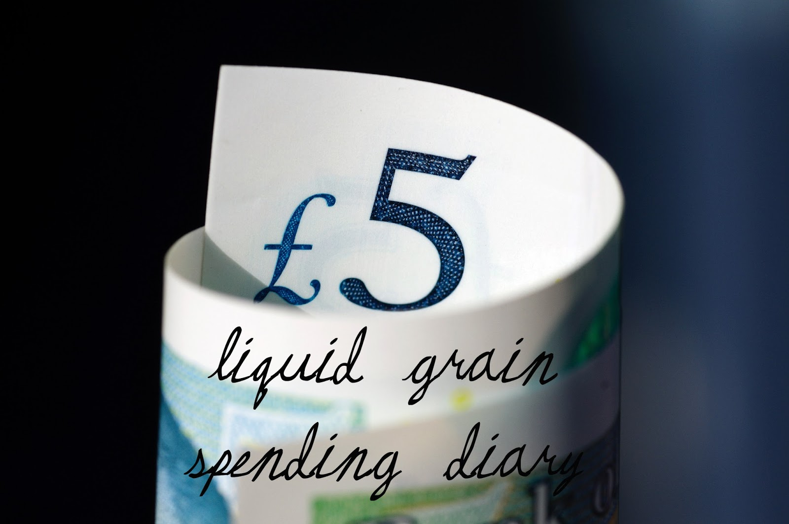 liquid grain liquidgrain spending diary money diary budget