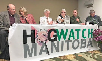 Members of Hog Watch Manitoba hold a press conference in Winnipeg. Photo: Shannon VanRaes
