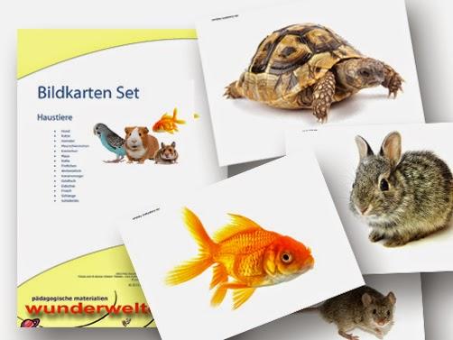 Bildkarten Haustiere - DaZ Material für die Sprachförderung in der Grundschule