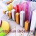 Teori Adam Smith Tentang Pertumbuhan Ekonomi