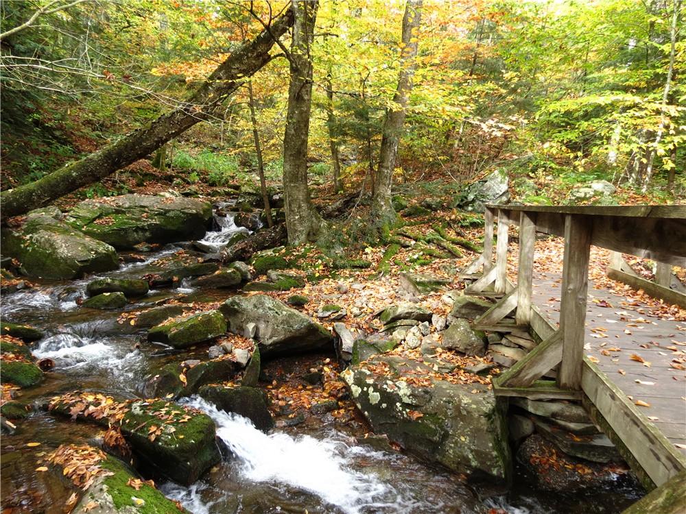 Gone Hikin Catskill Forest Preserve NY Platte Clove