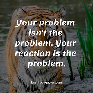 Uplifting Quotes - Brain Hack Quotes
