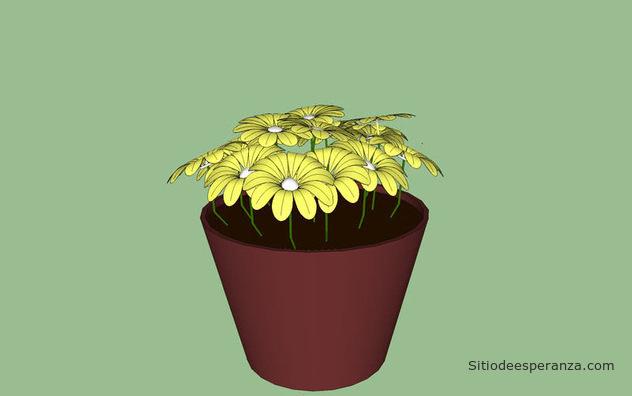 Flor en macetero