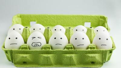 Benci telur? Berikut 10 Makanan Kaya Protein Yang Bisa Anda Konsumsi Untuk Memenuhi Kebutuhan Anda