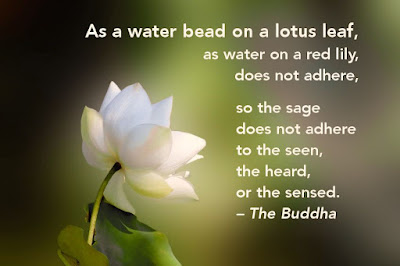 Great Buddhism Quotes