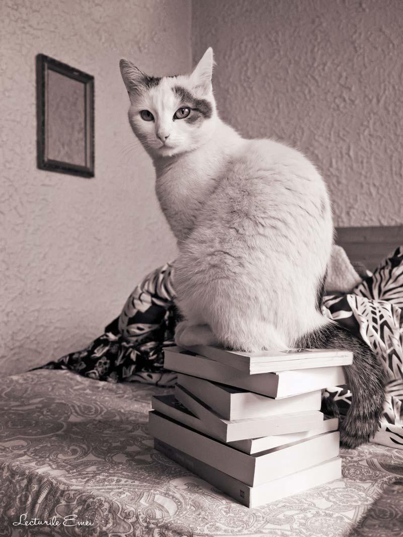pisica Năsuc cărți