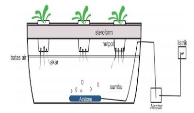 Sistem Rakit Apung (Water Culture System)