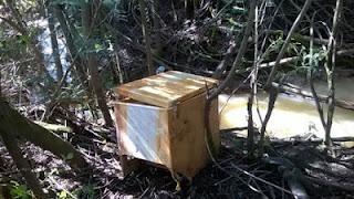 Arca congeladora abandonada num ribeiro