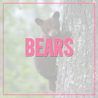 Bears-Theme