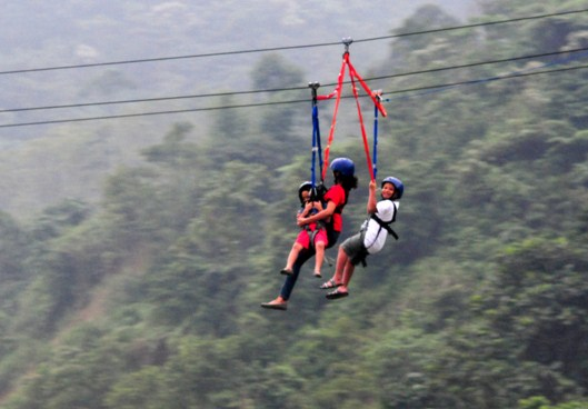 Flying fox curug bidadari