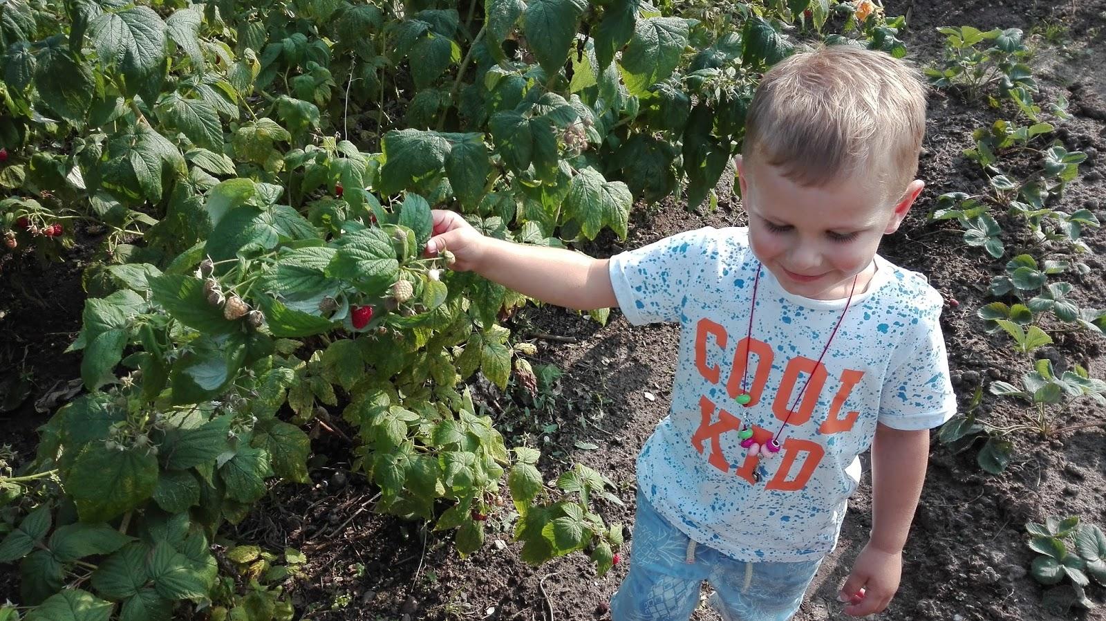 Idzie jesień - zadbaj o odporność swojego dziecka!
