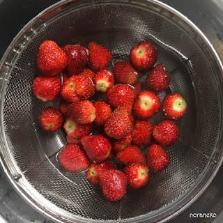 イチゴ(ケンタロウ)を洗う