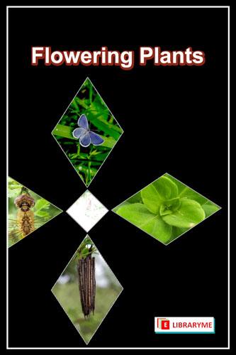 Flowering Plants Free PDF Download