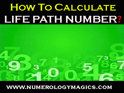 life path number calculator online