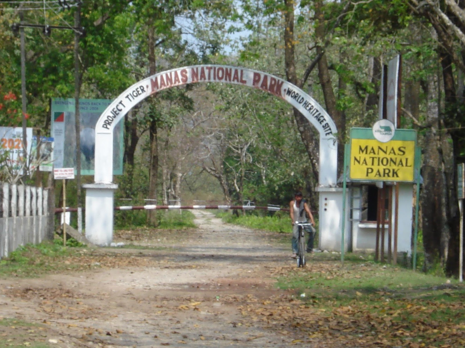Manas National Park, Heritage SIte of Assam - Go Travel Treasures