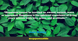 """""""Happiness cannot be traveled to, owned, earned, worn or consumed. Happiness is the spiritual experience of living every minute with love, grace, and gratitude.""""  ― Denis Waitley"""