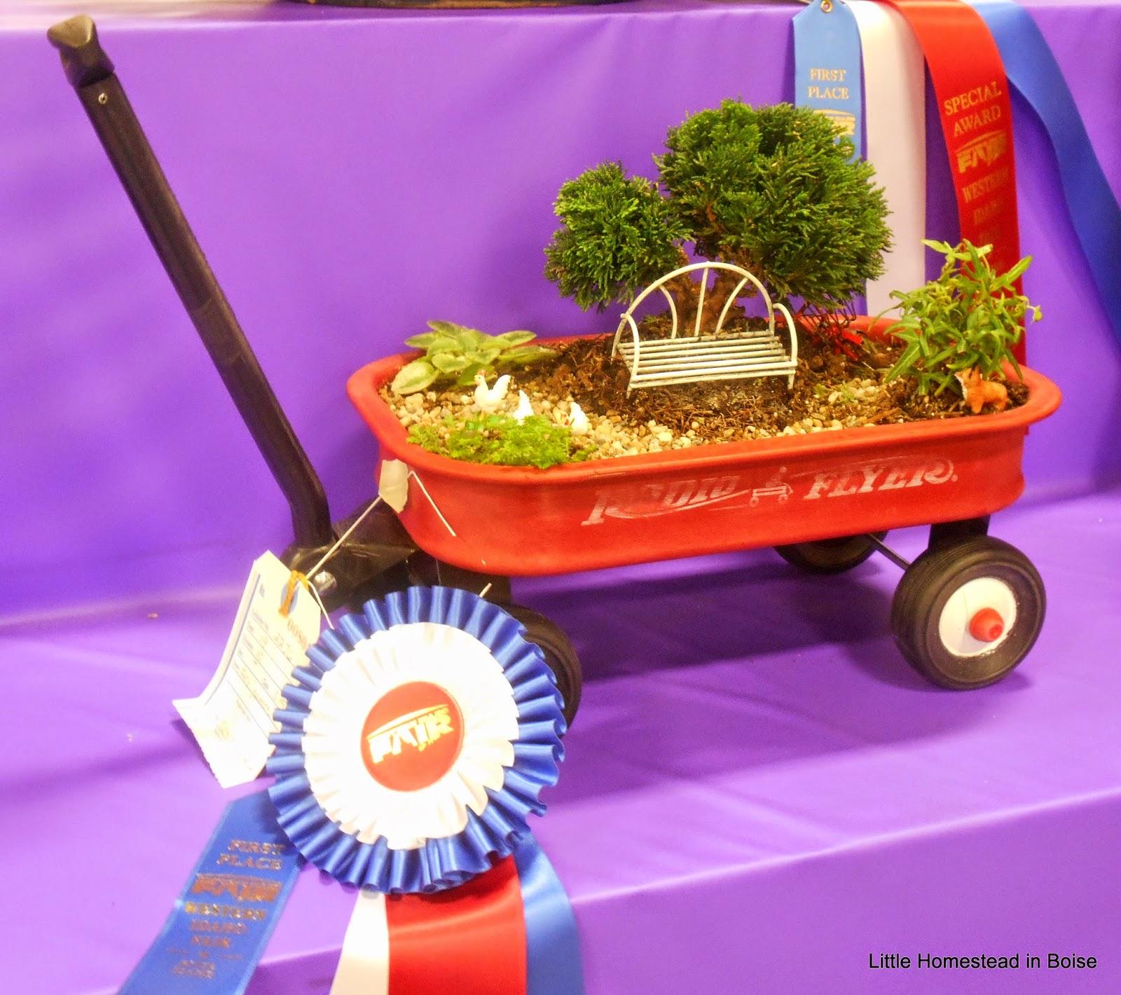 Roses In Garden: Little Homestead In Boise : A Little State Fair Fun