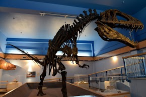 Dinosaur gallery set to reopen for first time in 3 years at Museum of the Red River in Idabel after renovation