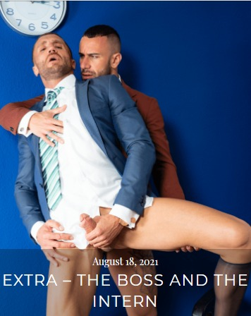 The Boss and the Intern Cover
