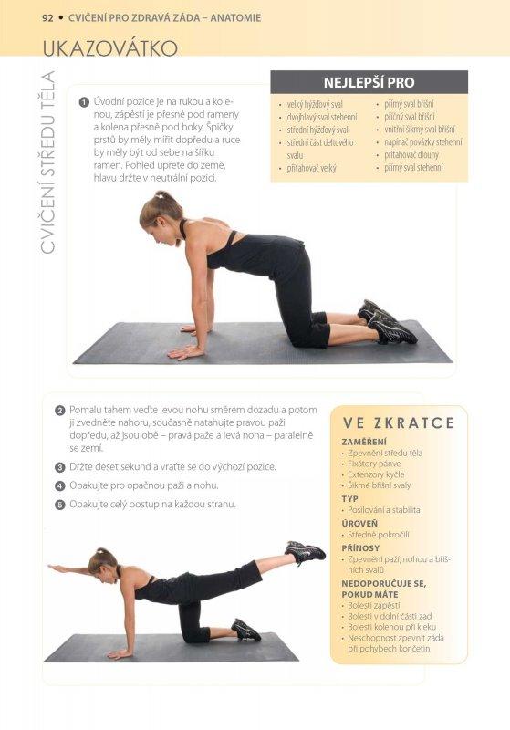 333 - How to?: Cvičení pro zdravá záda - anatomie