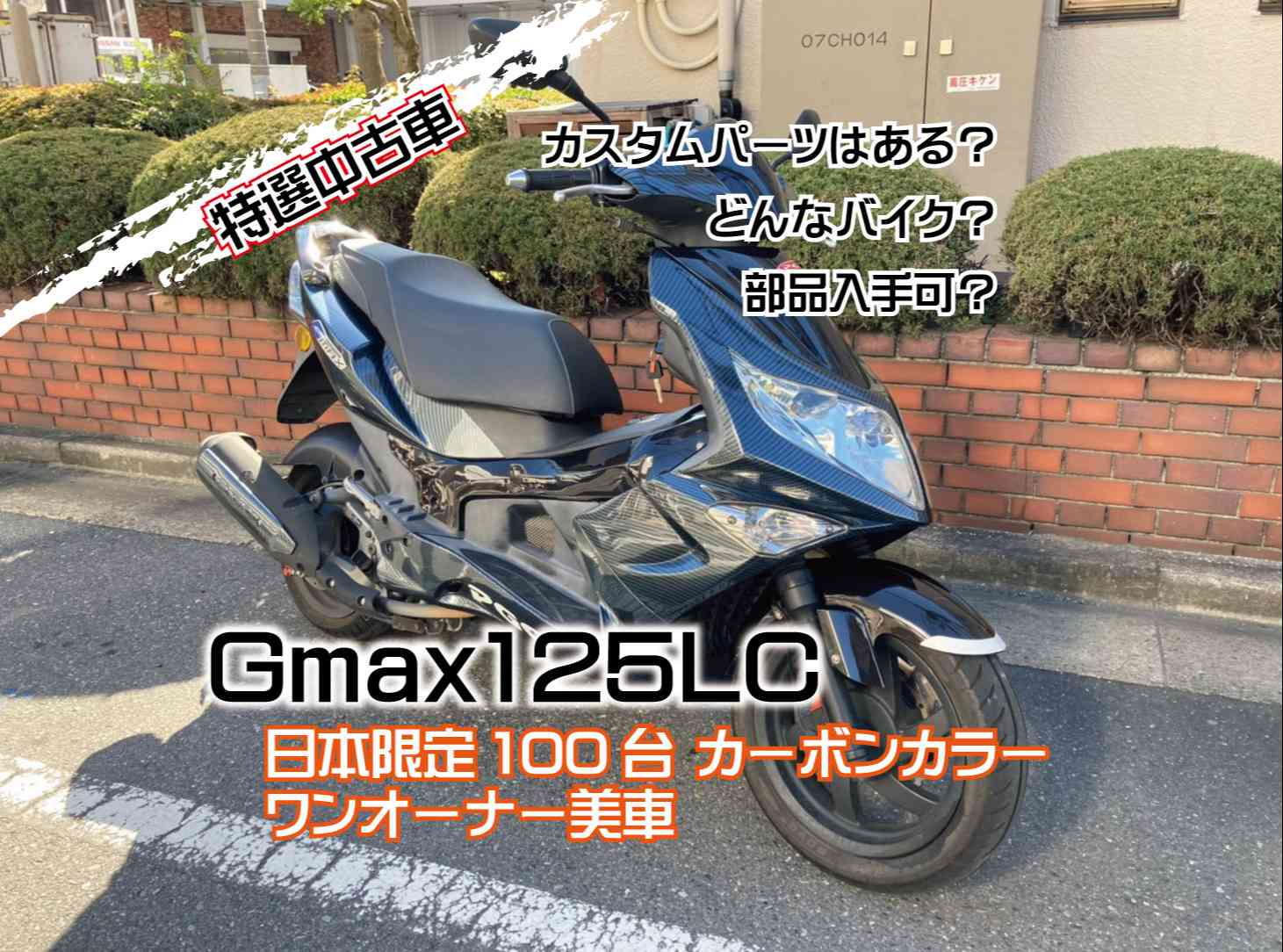 PGO Gmax125LC
