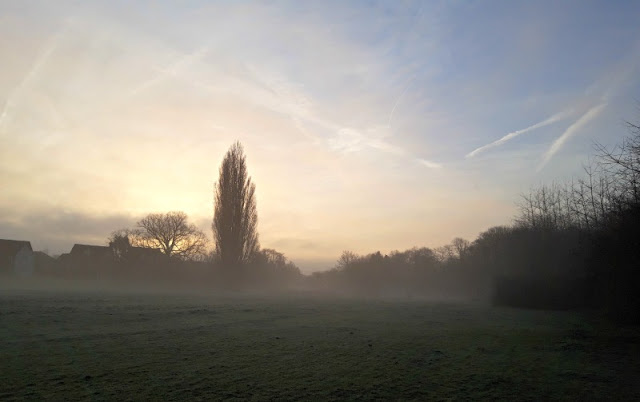 A sunrise over a misty field.  There are silhouettes of trees