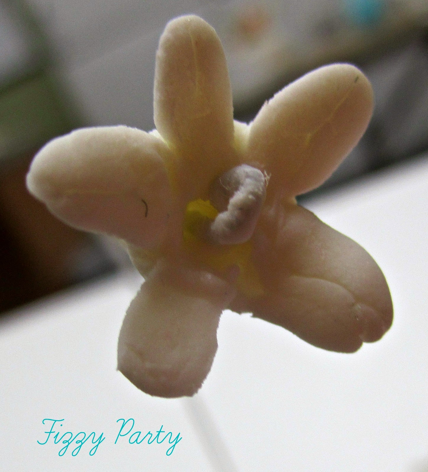 Gum Paste Class, Fizzy Party