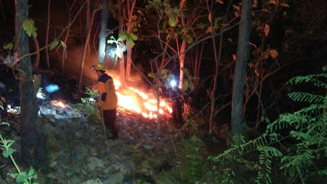 Api Berkobar di Hutan Lereng Bulu Dua, BPBD Soppeng Padamkan Dengan Alat Seadanya