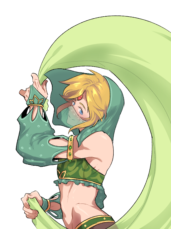 Link (Breath of the Wild) (Zelda no Densetsu: Breath of the Wild)